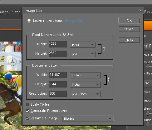 Scale & Resize Images Panel