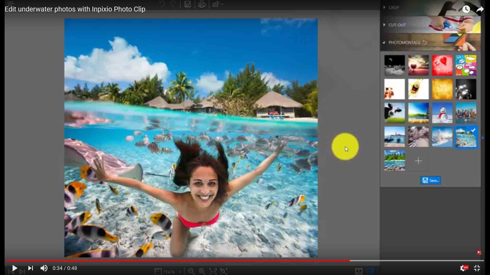 official] InPixio Photo Cutter for PC | Remove a background