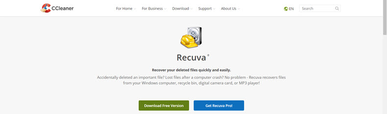 Recuva Website